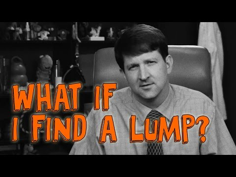 What if I Find a Lump on My Dog or Cat?