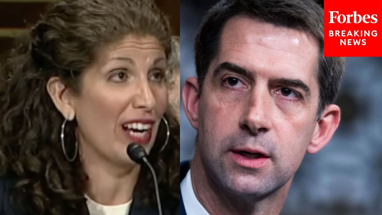 'Last Time You Flew, Did You Have To Show An ID?': Tom Cotton Grills Myrna Perez Over Voter ID Laws