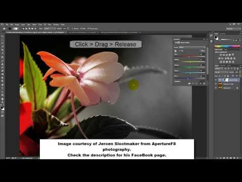 Black and white to color transition in Adobe Photoshop