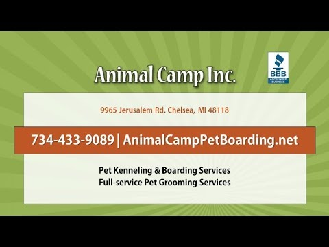 Animal Camp, Inc. | Chelsea MI Pet Grooming