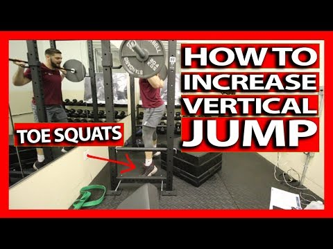 HOW TO INCREASE YOUR VERTICAL JUMP (Full Follow Along) Vertical Jump Training Workout - DAY 3