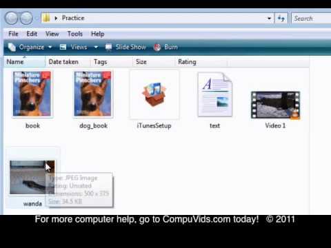 Windows Vista - Undoing a delete