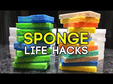 Clever Sponge Life Hacks You Need To Know!