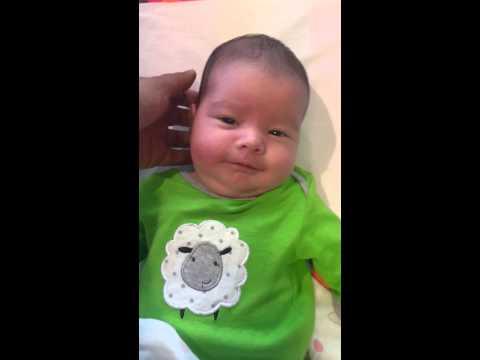Passport photo of baby girl