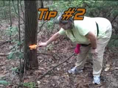 Outdoor Tips With Dolly