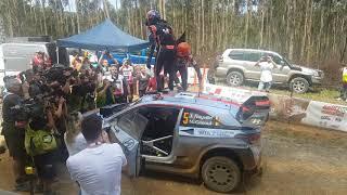 Thierry Neuville Rally Australia 2017 winner