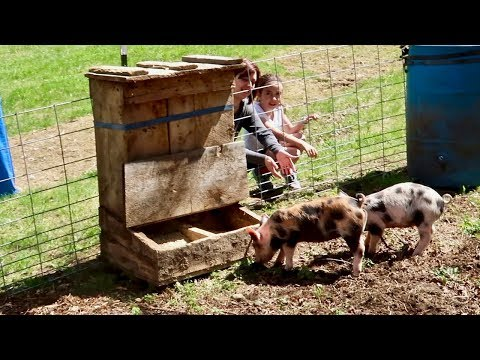 Getting The New PIGLETS