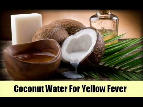 8 Effective Home Remedies To Cure Yellow Fever