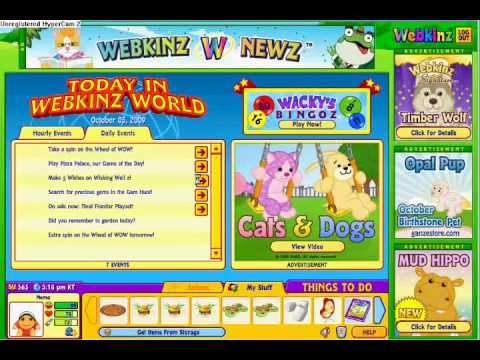 HOW TO MAKE MORE MONEY ON WEBKINZ DAILY!!!!!!