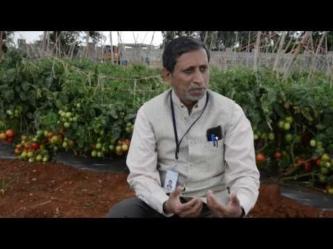 Interview by Dr.M.R.Dinesh, Director, ICAR-IIHR HD