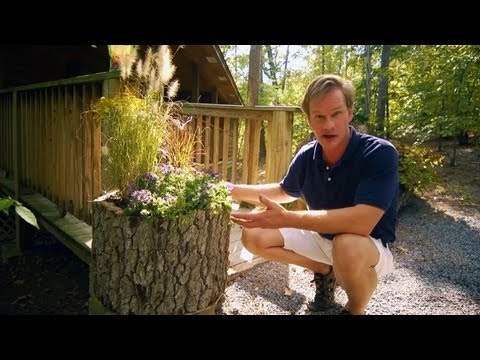 How to Make Wood Log Planters | At Home With P. Allen Smith