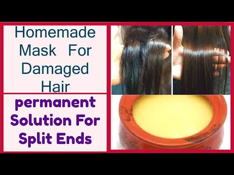 How To Get Rid of SPLIT ENDS Instantly & Maintain LONG HEALTHY HAIR with DESI GHEE/PREVENT SPLITENDS