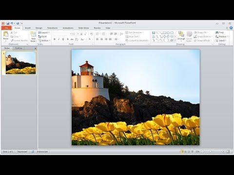 Tutorial powerpoint |Cara Remove atau Menghapus Background Pictures di Powerpoint