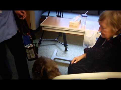 Pet Partners at St. Charles Hospital