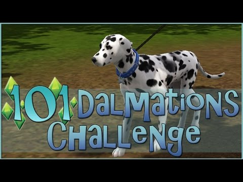 The Start to a Spotty New Adventure!! 🐶 Sims 3: 101 Dalmatians Challenge!! - Episode #1