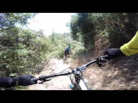 Mount Wilson Trail - Descent