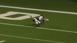 AUDL Catch Of The Year Candidate | Stadium