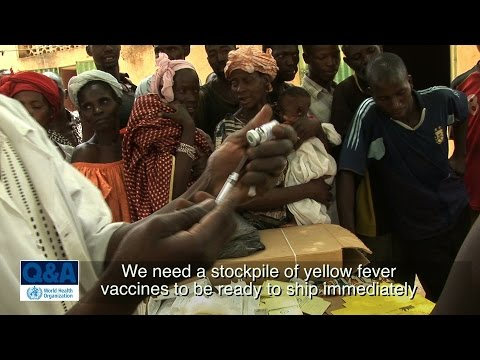 WHO: Yellow fever vaccines global stockpile - Questions and answers (Q&A)