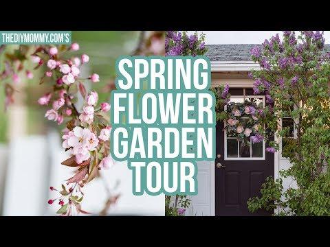 Spring Flower Garden Tour | Zone 3 Gardening