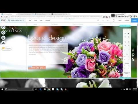 Expert WIX Design Tutorial for Pop up Window