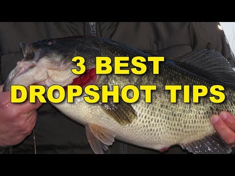 The Best Dropshot Tips (Because They Work!)  | Bass Fishing