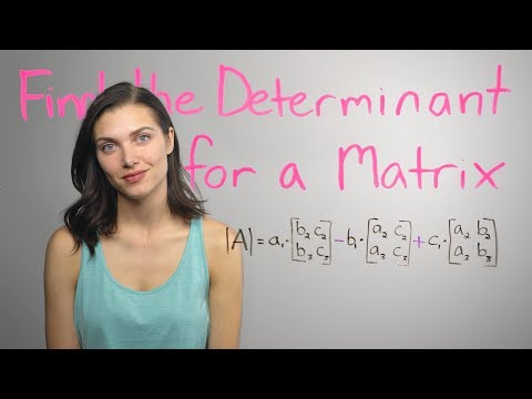 ❤︎² Matrix Determinants.. How? (mathbff)