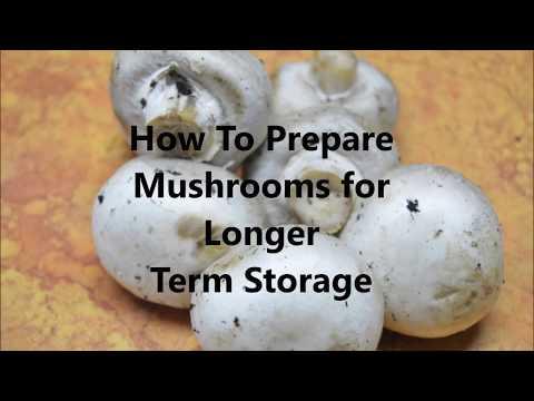 How to Prepare Mushrooms For Longer Term Storage