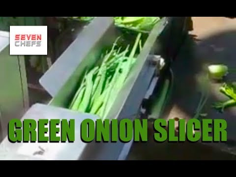 Slicing Green Onions in Onion Chopping Machine