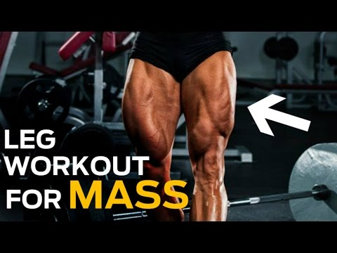 The 6 Best Leg Exercises You're Not Doing (Ultimate Leg Workout)