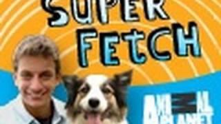 Superfetch: Dog Rides Tandem Bike