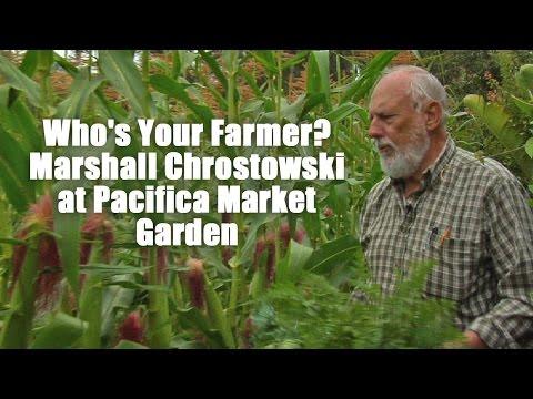 Who's Your Farmer? Marshall Chrostowski at Pacifica Market Garden