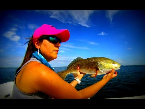 Catching Pumpkins-Florida Redfish Tampabay