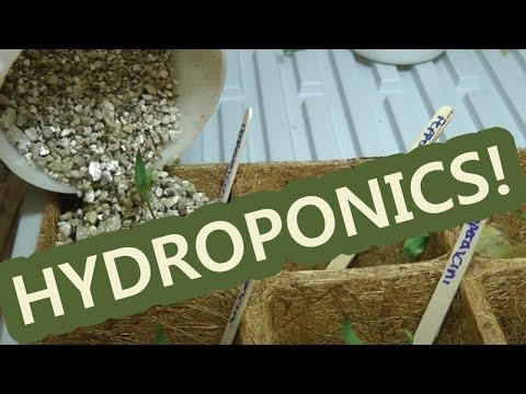 How to disassemble a hydroponic system S04E01