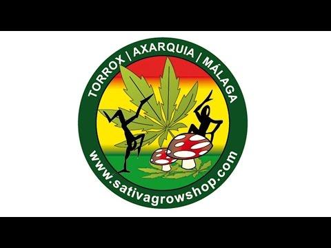 Besten Grow Zubehör Online   Kaufen Sie Ihre Cannabis Samen