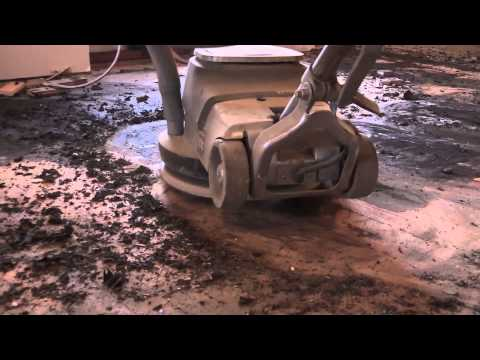 Mastic Removal on a Hardwood Floor | City Floor Supply