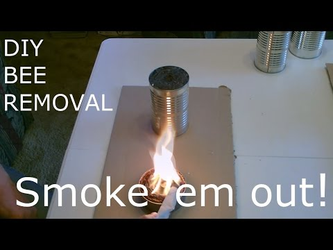 DIY BEE & WASP REMOVAL - Smoke 'em out! (cheap/easy/effective and doesn't harm/hurt them)