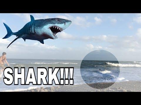 Shark attack!!! (SKIMBOARDING)