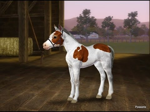 The birth of Logic Movie - Sims 3 Pets - Chincoteague Pony breeding