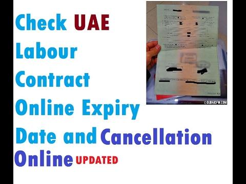 mol.gov.ae Check Labor Contract Online UAE Dubai