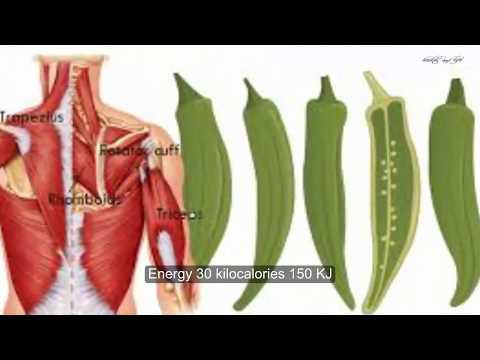 Okra Health Benefits -  Okra Uses, Health Benefits And Side Effects