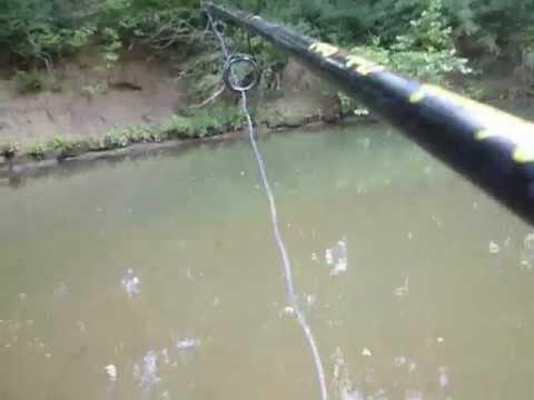 Small Creek Gar Fishing