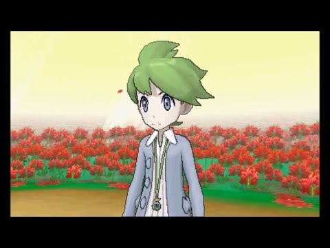 Pokemon Omega Ruby/Alpha Sapphire - Walkthrough Part 18 - Victory Road