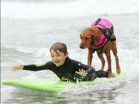 Surf dog Ricochet on ESPN's Sport's Center KLEENEX ALERT!