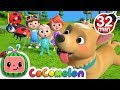 Where Has My Little Dog Gone More Nursery Rhymes Kids Songs CoCoMelon