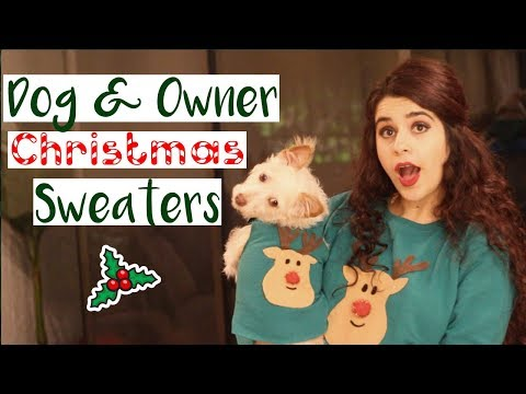 Easy DIY Dog & Owner Christmas Sweaters (no sew) | Pet DIYS 🎄
