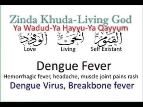 Healing Dengue Fever or Dengue hemorrhagic Fever