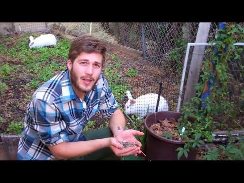 The Farmer Tyler Homestead