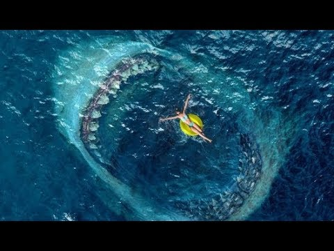 Audience Reactions Are Hitting Twitter || The Meg [2018] Movie