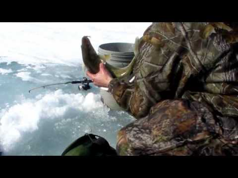 Ice Fishing Monster Lake Erie Walleye-Fishing and Fun With JFick-Ohio Outdoors