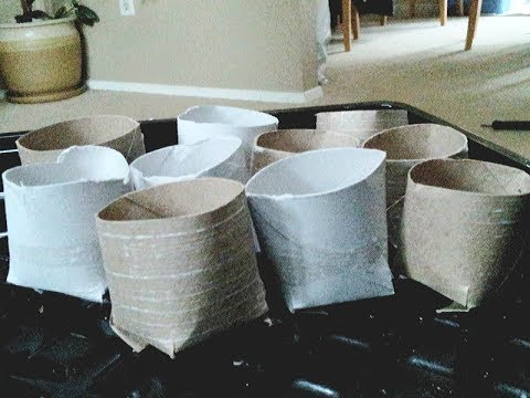 How to make Seed Starter Pots Reusing Toilet Paper Tubes